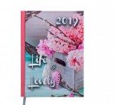 Ежедневник датированный 2019 ROMANTIC, A5, блок белый, св.-розовый (BM.2170-43)